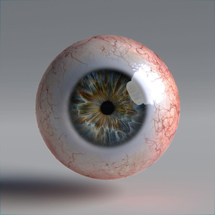 인간의 눈 royalty-free 3d model - Preview no. 8