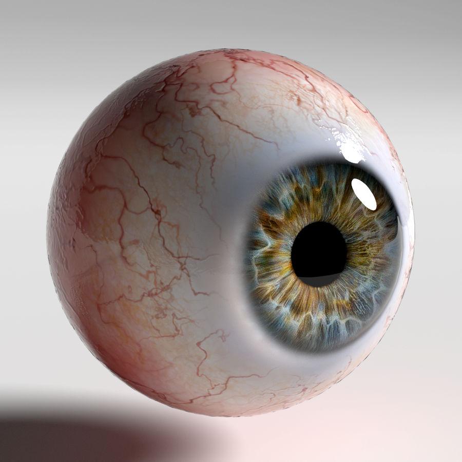 인간의 눈 royalty-free 3d model - Preview no. 7