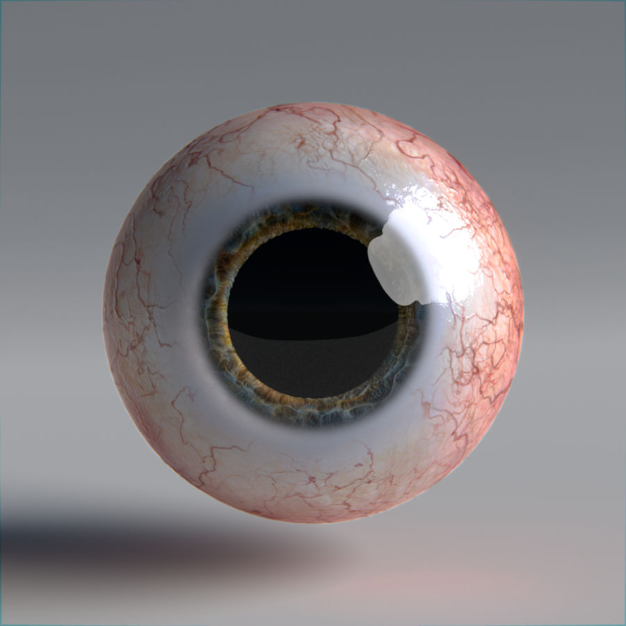 인간의 눈 royalty-free 3d model - Preview no. 11