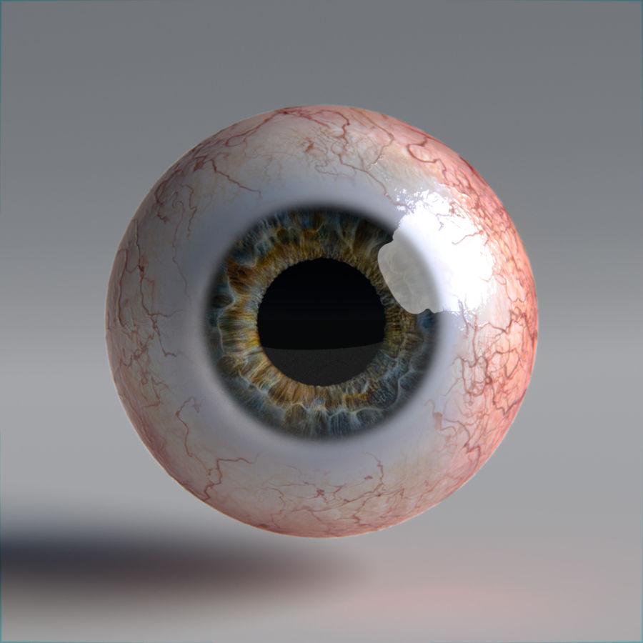 인간의 눈 royalty-free 3d model - Preview no. 10