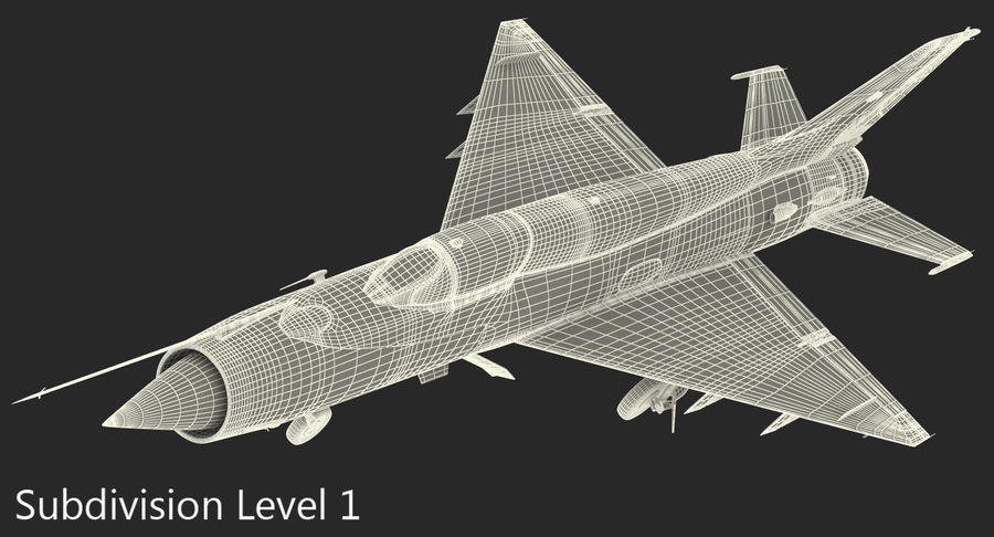 MiG-21 Bison Indian Air Force IAF royalty-free 3d model - Preview no. 19