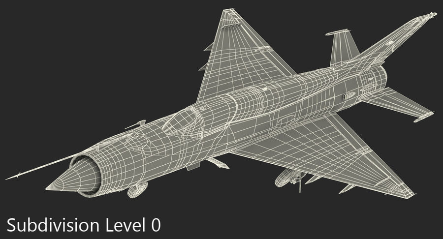 MiG-21 Bison Indian Air Force IAF royalty-free 3d model - Preview no. 18
