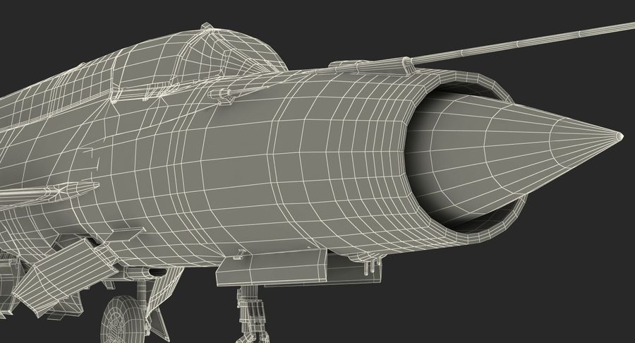 MiG-21 Bison Indian Air Force IAF royalty-free 3d model - Preview no. 26