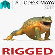 African Bullfrog truqué pour Maya 3d model