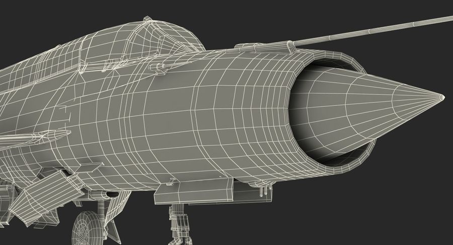 MiG-21 Egyptian Air Force Rigged 3D Model royalty-free 3d model - Preview no. 27