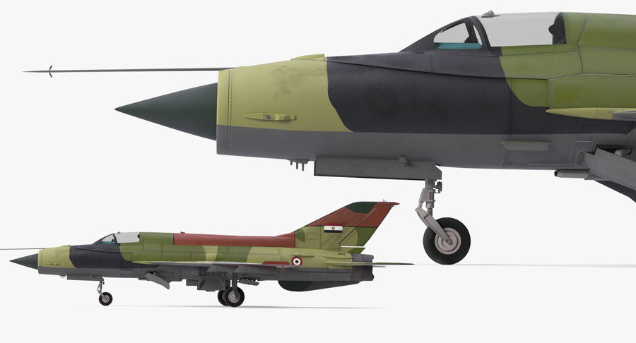MiG-21 Egyptian Air Force Rigged 3D Model royalty-free 3d model - Preview no. 12