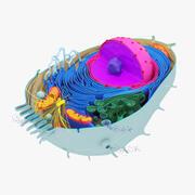 Animal celular (1) modelo 3d