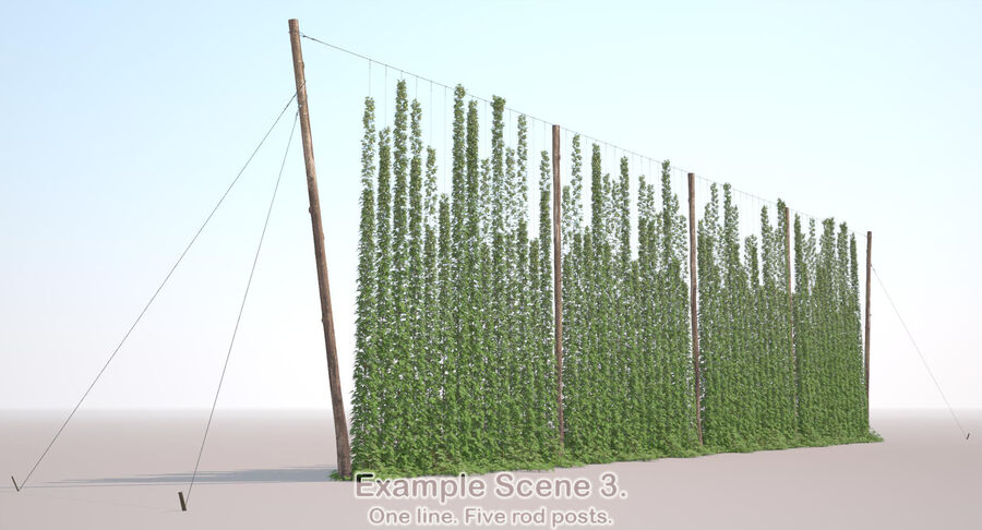Hop Yard (1) royalty-free 3d model - Preview no. 50