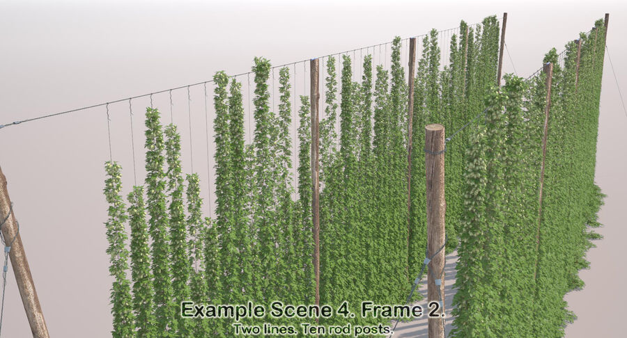 Hop Yard (1) royalty-free 3d model - Preview no. 52