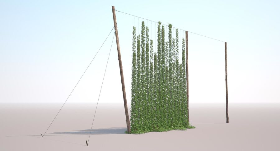 Hop Yard (1) royalty-free 3d model - Preview no. 6