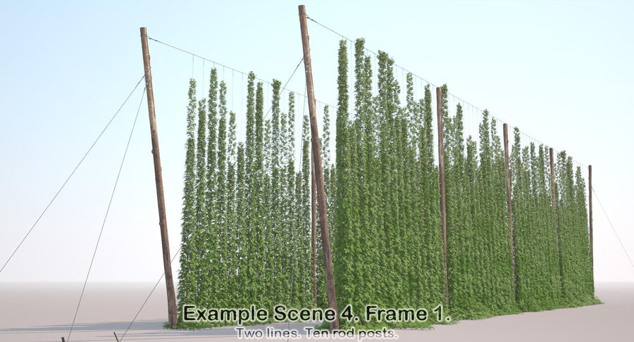 Hop Yard (1) royalty-free 3d model - Preview no. 51
