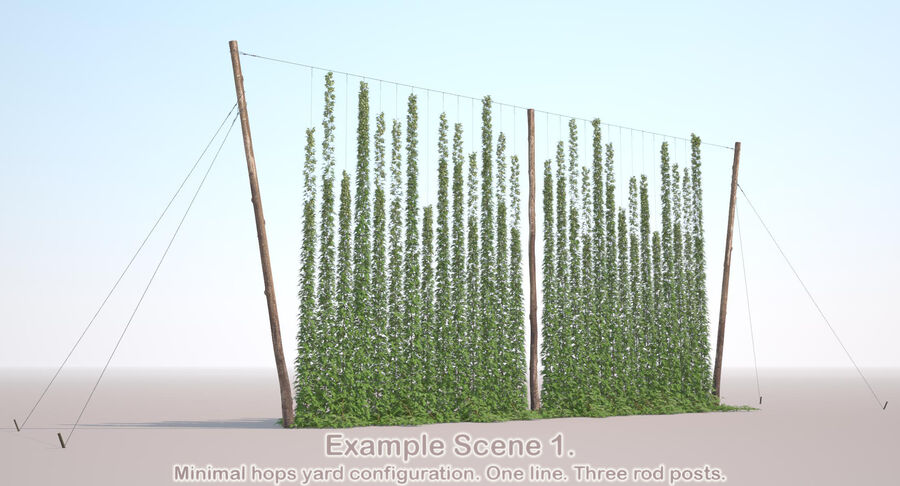 Hop Yard (1) royalty-free 3d model - Preview no. 48