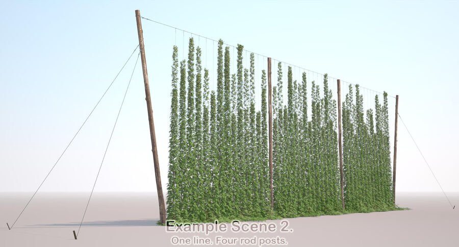 Hop Yard (1) royalty-free 3d model - Preview no. 49