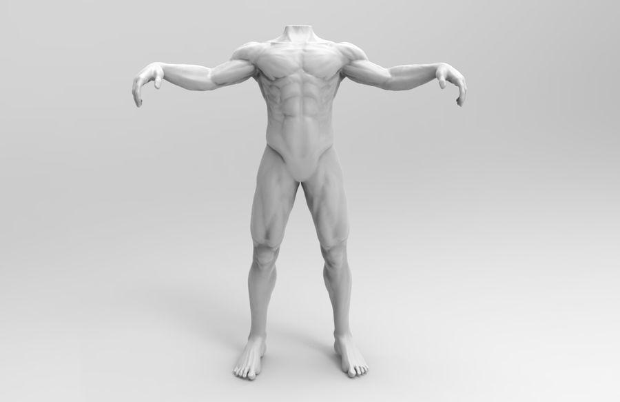 인간의 몸 royalty-free 3d model - Preview no. 5