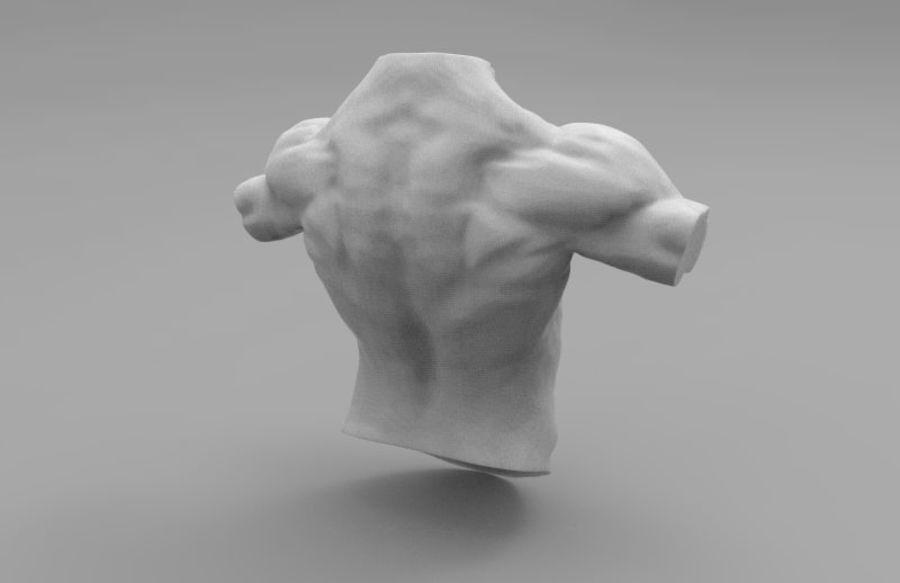 인간의 몸 royalty-free 3d model - Preview no. 4
