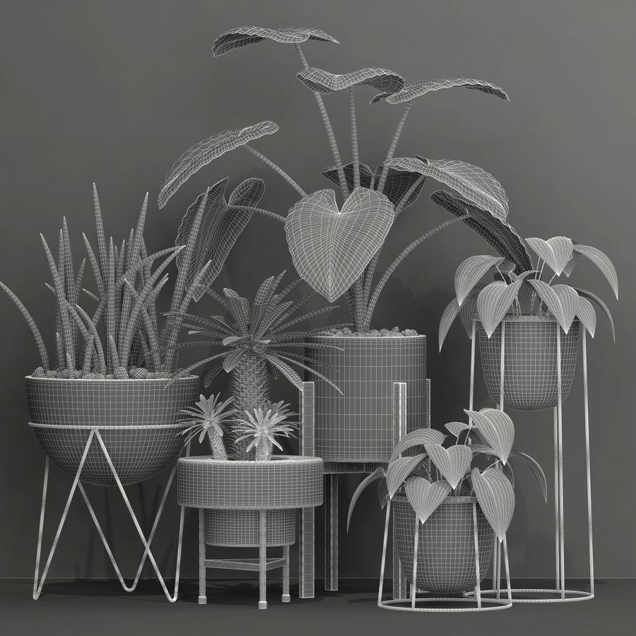 植物27 royalty-free 3d model - Preview no. 4