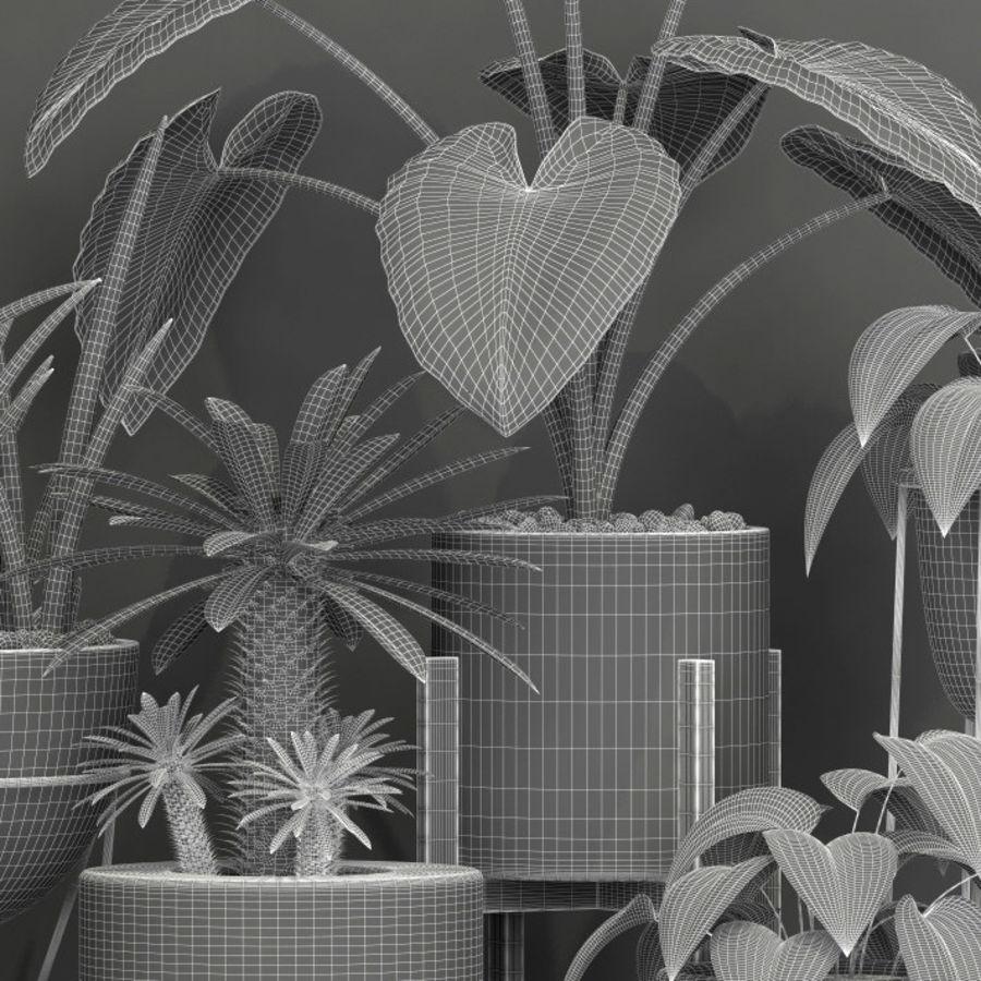 植物27 royalty-free 3d model - Preview no. 5