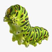 Papilio Machaon Caterpillar reeps 3d model