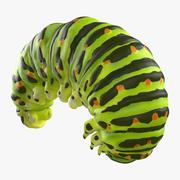 Swallowtail Caterpillar Green 3d model