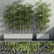 Bambus 03 3d model