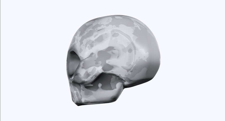 Skull royalty-free 3d model - Preview no. 3