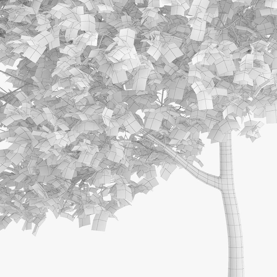 Common Hornbeam Tree 5m royalty-free 3d model - Preview no. 6