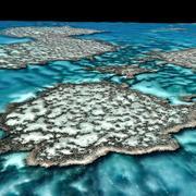 Wielka rafa koralowa 3d model