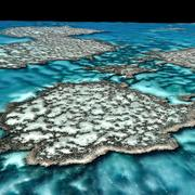 A grande barreira de corais 3d model