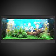 Aquarium 3d model