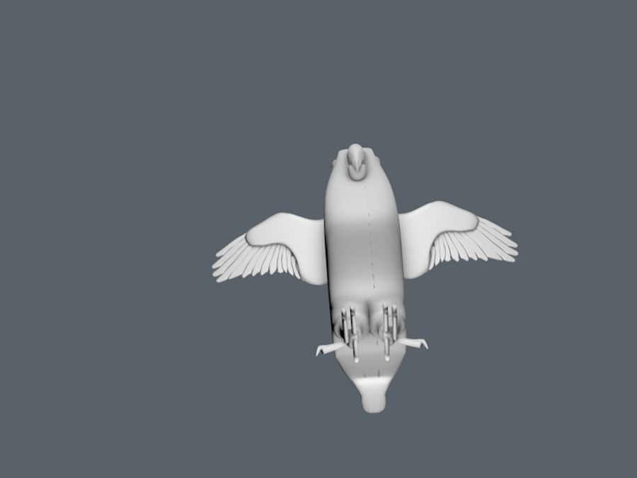 bird royalty-free 3d model - Preview no. 5