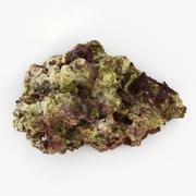 Fiji Reef Rock 02 3d model
