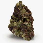Fiji Reef Rock 03 3d model