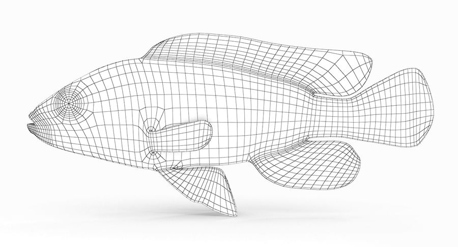 Pundamilia Cichlid royalty-free 3d model - Preview no. 7