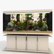 Akvaryum 3d model
