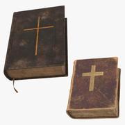 Dwie zabytkowe Biblie 3d model