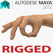Man Hands 2 für Maya manipuliert 3d model