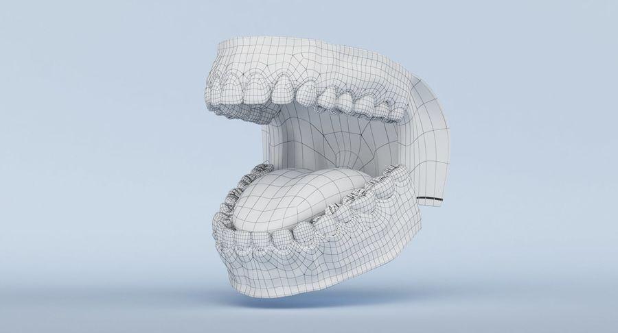 牙齿和牙龈 royalty-free 3d model - Preview no. 23
