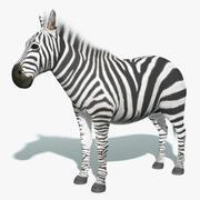 Zebra (päls) 3d model