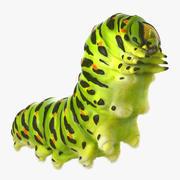 Papilio Machaon Caterpillar kryper med päls 3d model
