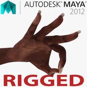 Kvinnlig hand afrikansk amerikan 2 riggade för Maya 3d model