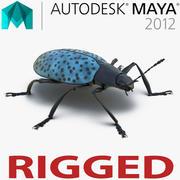 Gibbifer Californicus Beetle 2 для майя 3d model