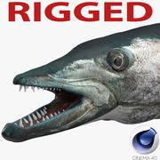 Barracuda Fish Rigged für Cinema 4D 3d model