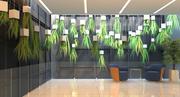 蕨类 3d model