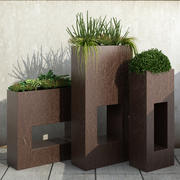 植物35 3d model