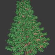块松树 3d model