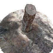 Ağaç kütüğü 3d model
