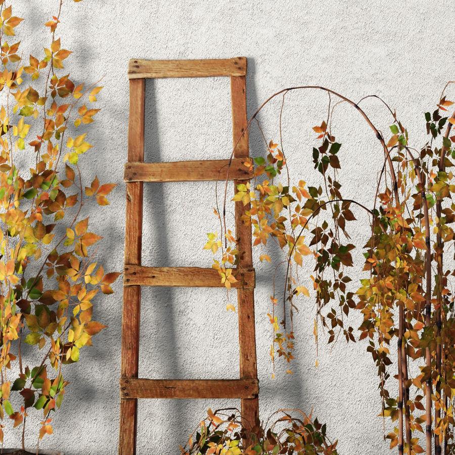 Rośliny w doniczkach Zestaw royalty-free 3d model - Preview no. 4