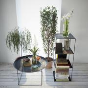 Små växter med dekor 3d model