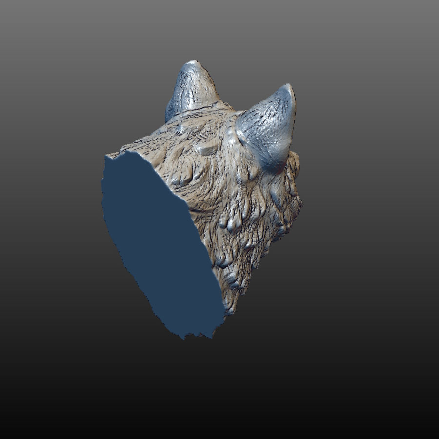 Cabeza de lobo sólido royalty-free modelo 3d - Preview no. 5