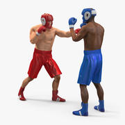 Boxers Fighting 3d model
